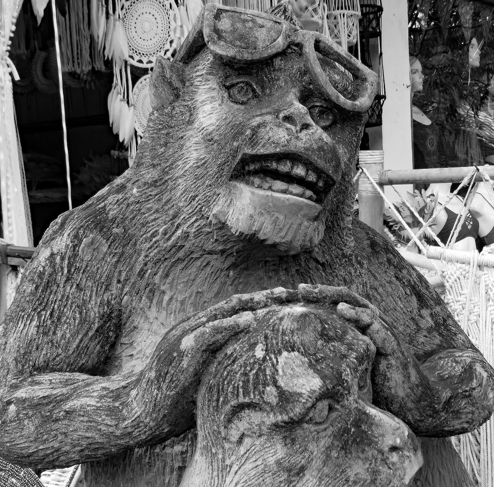 bali 4_cool monkey bw_edited-1 copy