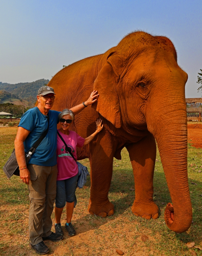 Our first Elephant in Thailand