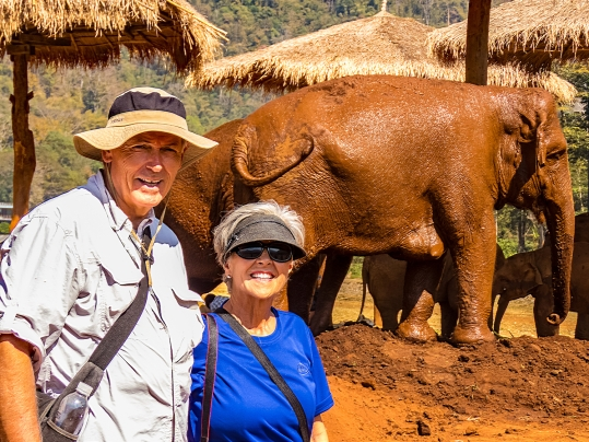 With the Elephants in Thailand