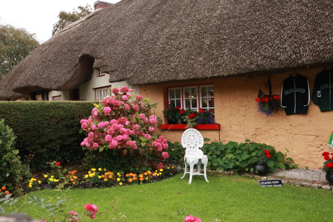 Adare_flowers and thatch