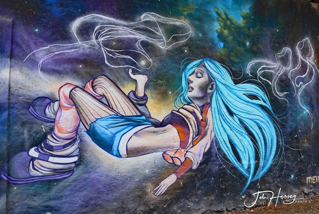01 17 20_blue girl mural_edited-2