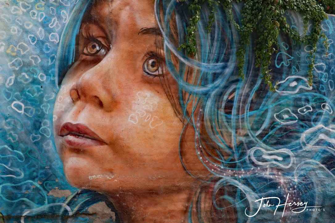 01 17 20_blue young girl mural 2_edited-2