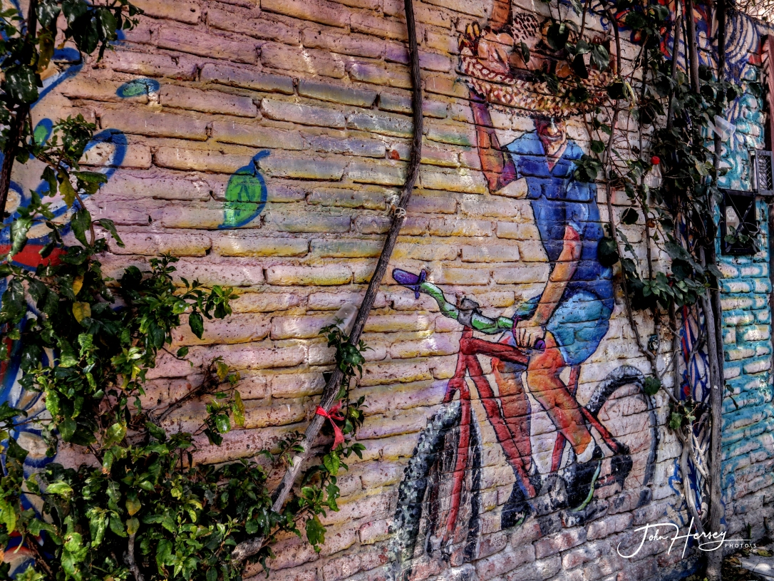 sma street art tour_2020 Mar 12_Bike on Brick_edited-2
