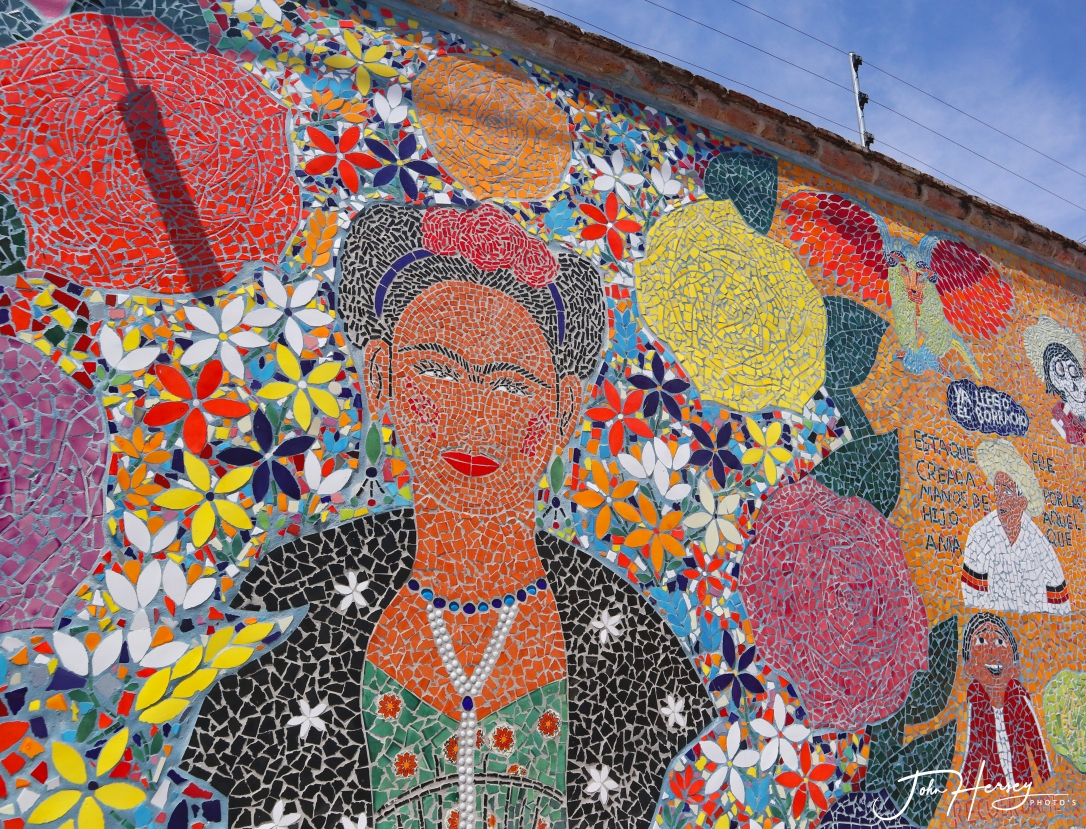 sma street art tour_2020 Mar 12_Frida Tiles_edited-2