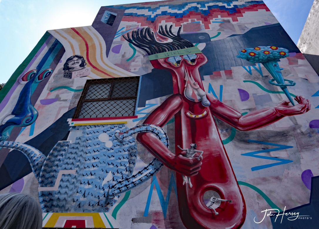 sma street art tour_2020 Mar 12_Gumby_edited-2