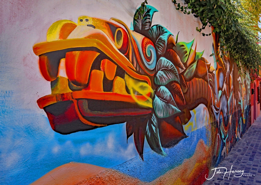 sma street art tour_2020 Mar 12_snake_edited-2