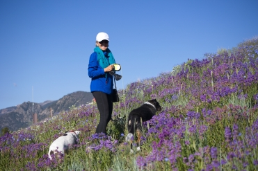 Bev and Kids in the wildflowers